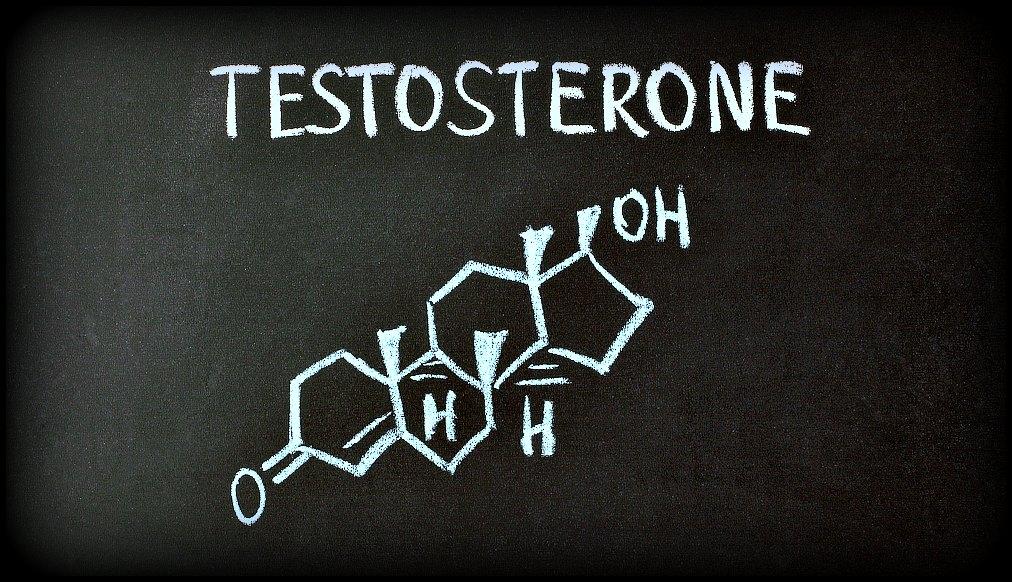 testosteron vzorec