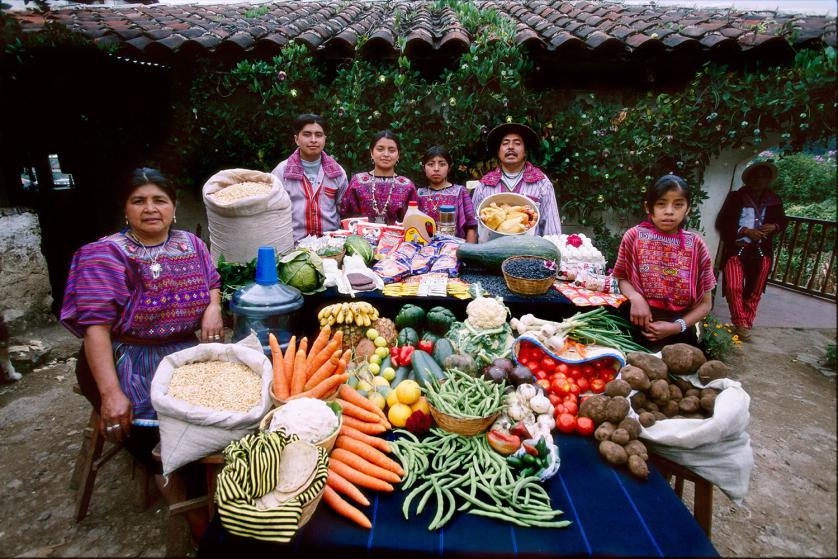 GUA02.0001.xxf1s (MODEL RELEASED IMAGE) The Mendoza family and a servant in their courtyard in Todos Santos Cuchumatán, Guatemala, with a week's worth of food. Between Fortunato Pablo Mendoza, 50, and Susana Pérez Matias, 47, stand (left to right) Ignacio, 15, Cristolina, 19, and a family friend (standing in for daughter Marcelucia, 9, who ran off to play). Far right: Sandra Ramos, 11, live-in helper. Not present: Xtila, 17, and Juan, 12. Cooking methods: gas stovetop, wood stove. Food preservation: refrigerator. /// The Mendoza family is one of the thirty families featured in the book Hungry Planet: What the World Eats (p. 156). Food expenditure for one week: $75.70 USD. (Please refer to Hungry Planet book p. 157 for the family's detailed food list.)