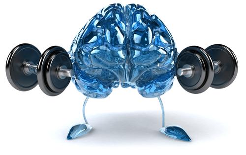 mozek4