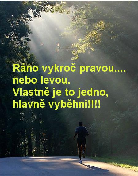 rano_beh