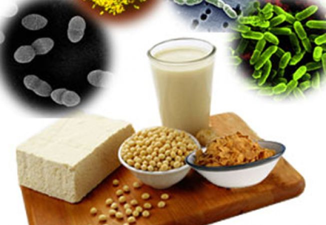 zdroj-probiotik